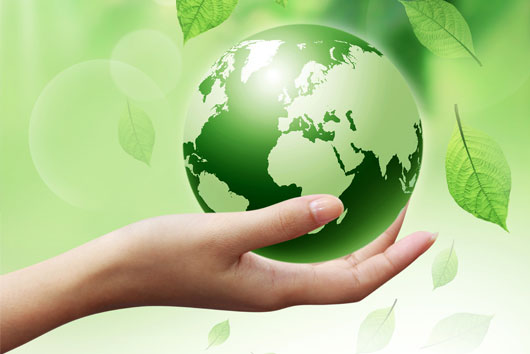 essay role children environmental conservation The importance of biodiversity and effects environmental sciences essay print reference this published: 23rd march, 2015 disclaimer: this.